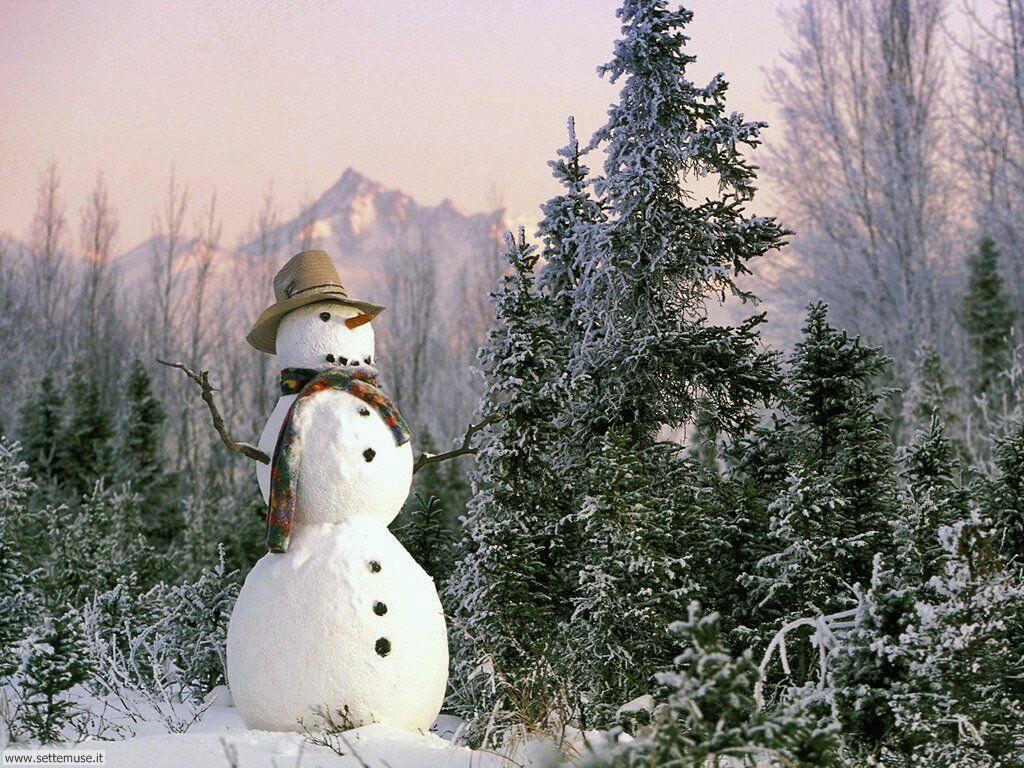 Foto desktop di neve e paesaggi innevati 056