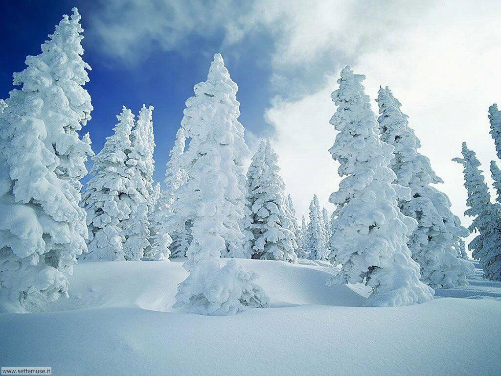 Foto desktop di neve e paesaggi innevati 057
