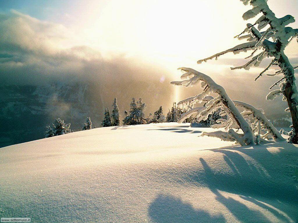 Foto desktop di neve e paesaggi innevati 058