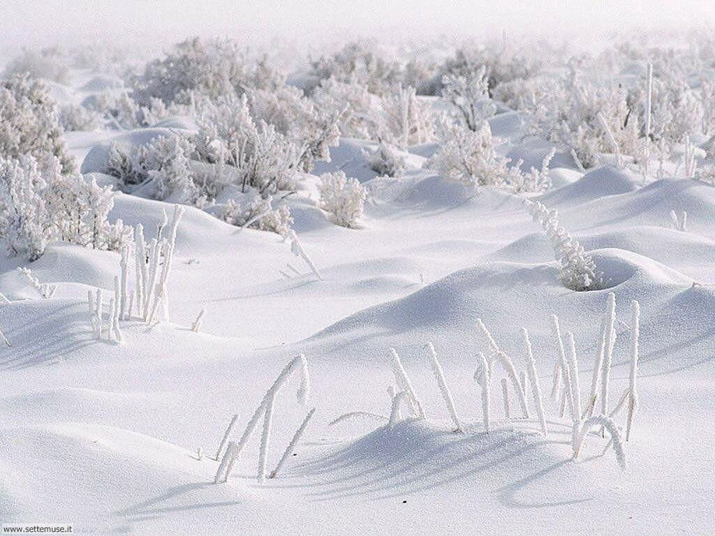 Foto desktop di neve e paesaggi innevati 059