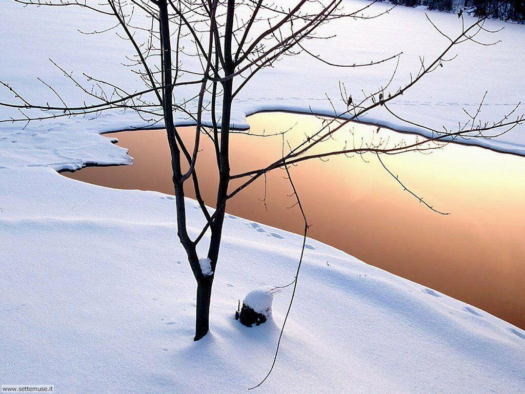 Foto desktop di neve e paesaggi innevati 061