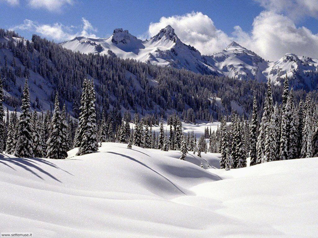 Foto desktop di neve e paesaggi innevati 064
