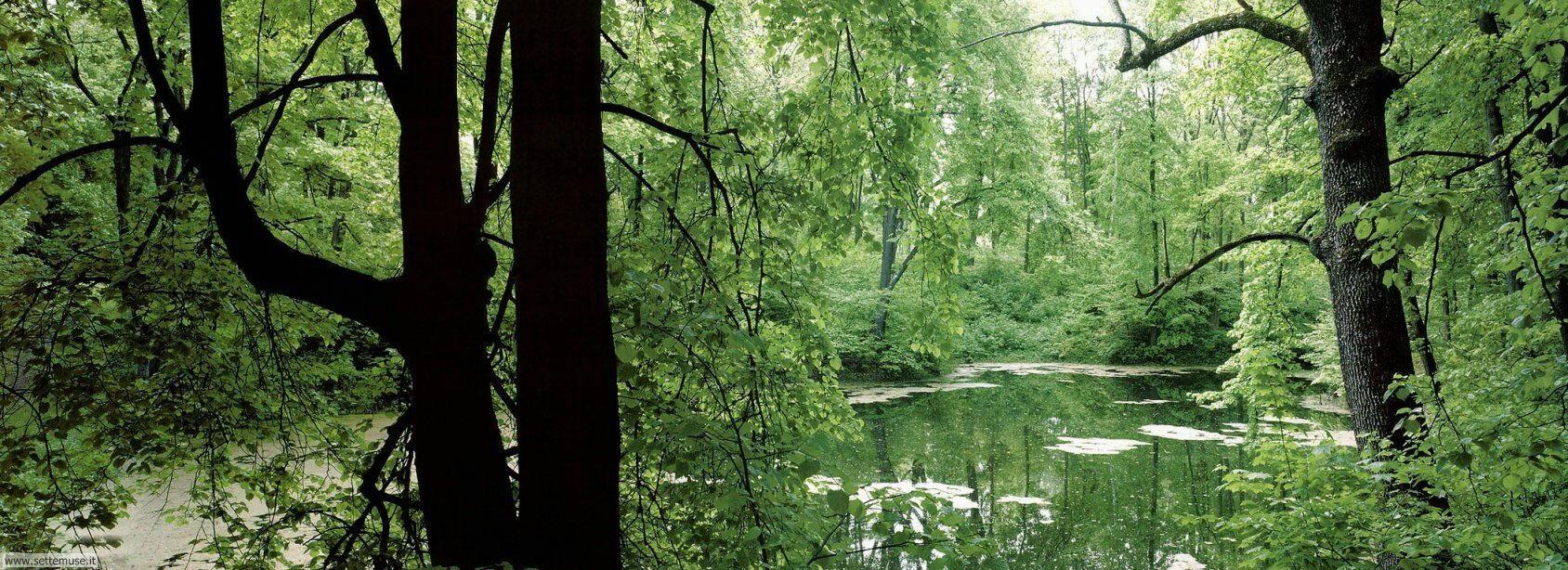 Foto panorami wide 022