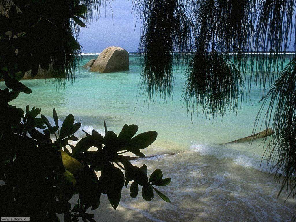Foto desktop di spiagge da sogno 009