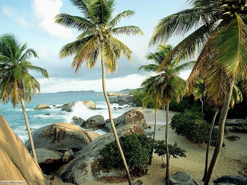 Foto desktop di spiagge da sogno 015