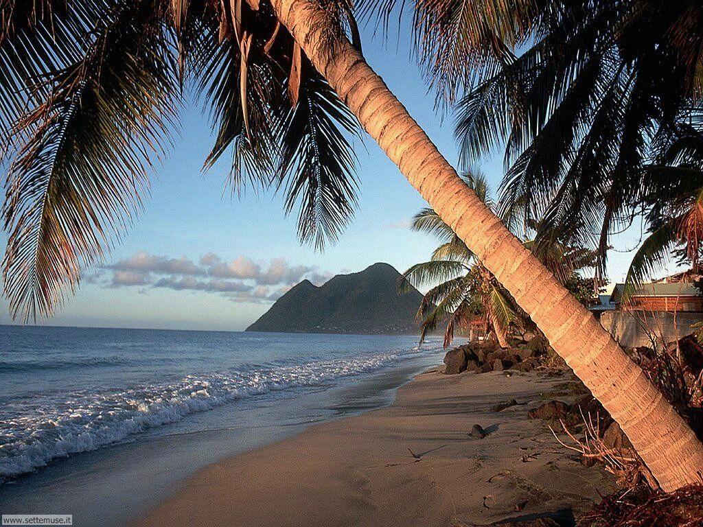 Foto desktop di spiagge da sogno 016