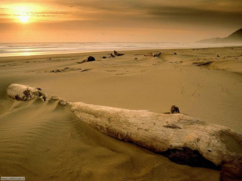 Foto desktop di spiagge da sogno 027