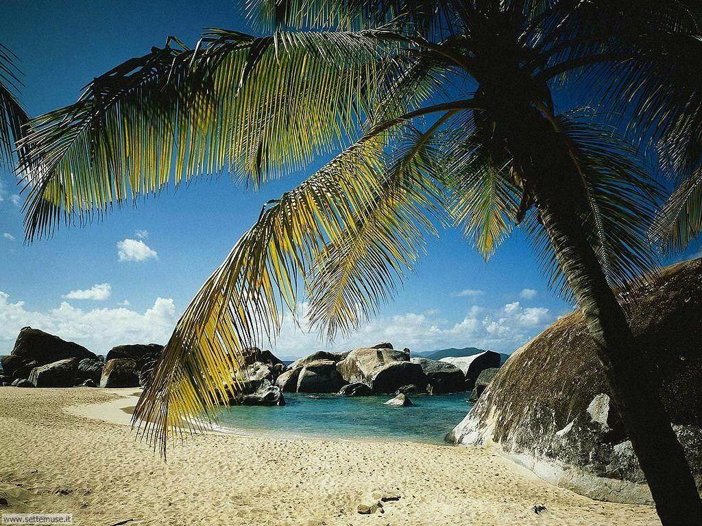 Foto desktop di spiagge da sogno 028
