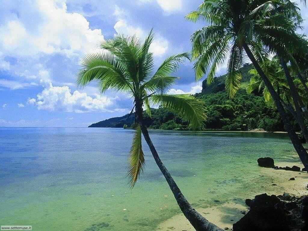Foto desktop di spiagge da sogno 035