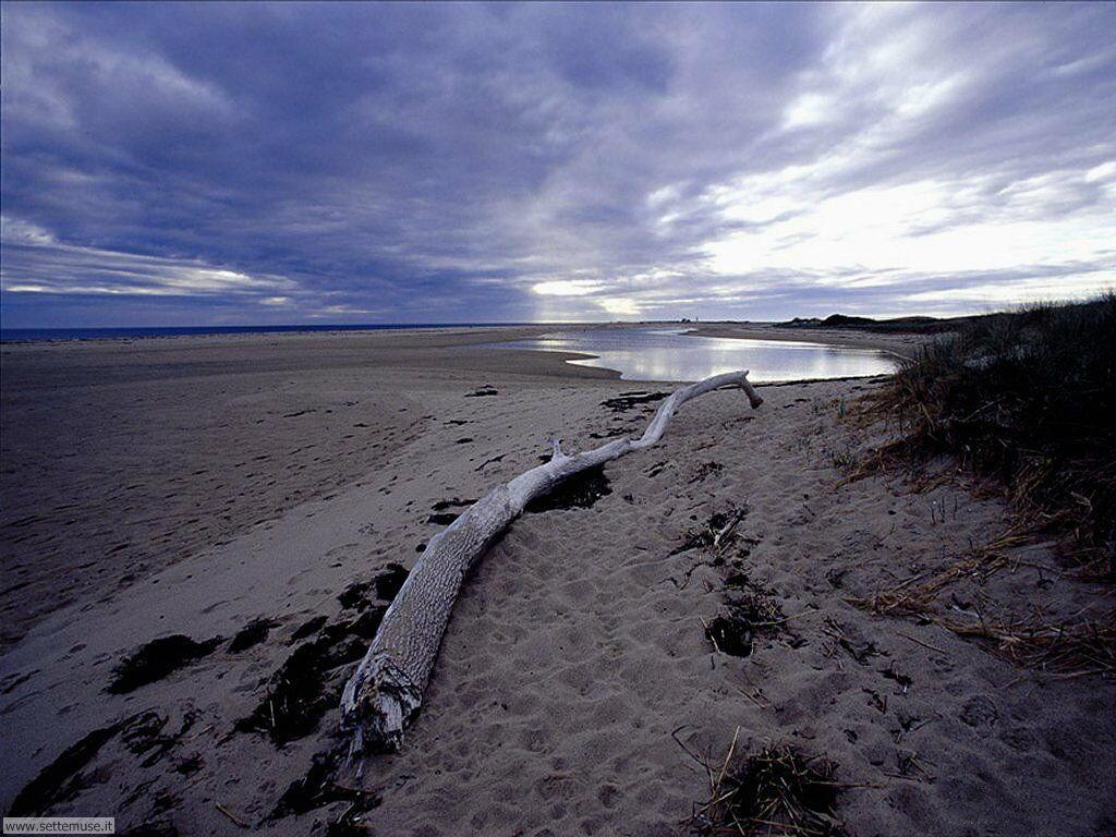 Foto desktop di spiagge da sogno 038