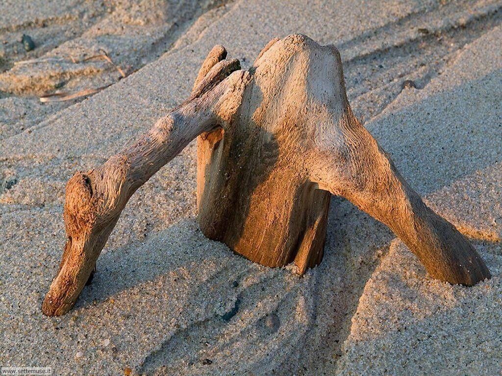 Foto desktop di spiagge da sogno 044