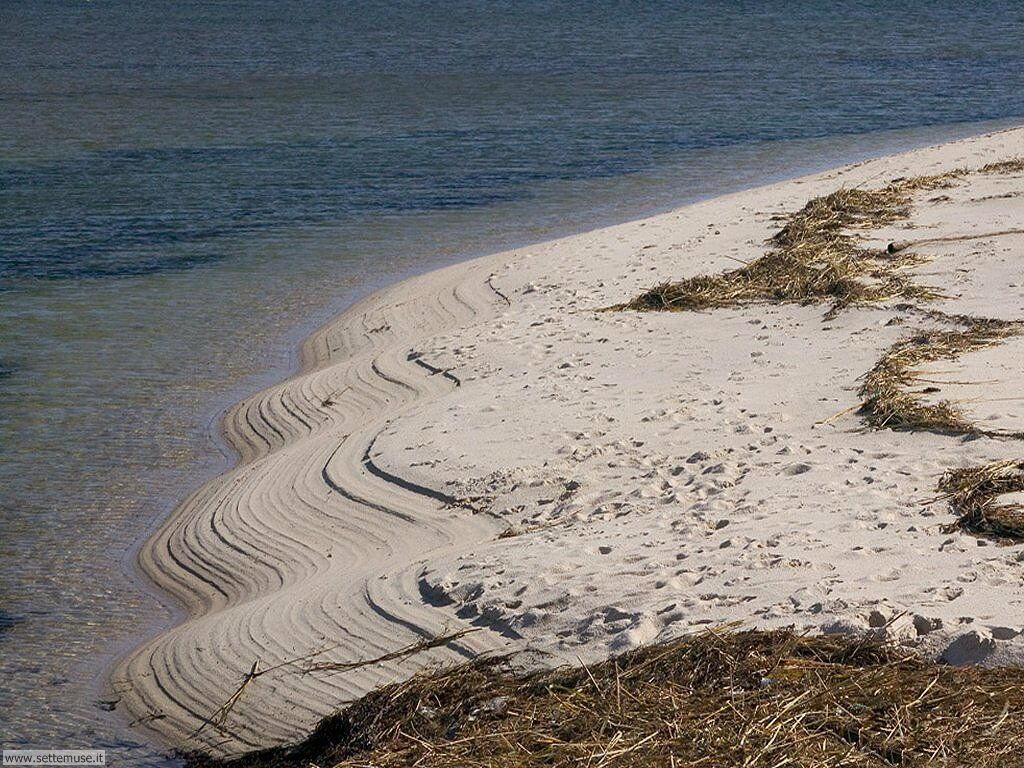 Foto desktop di spiagge da sogno 045