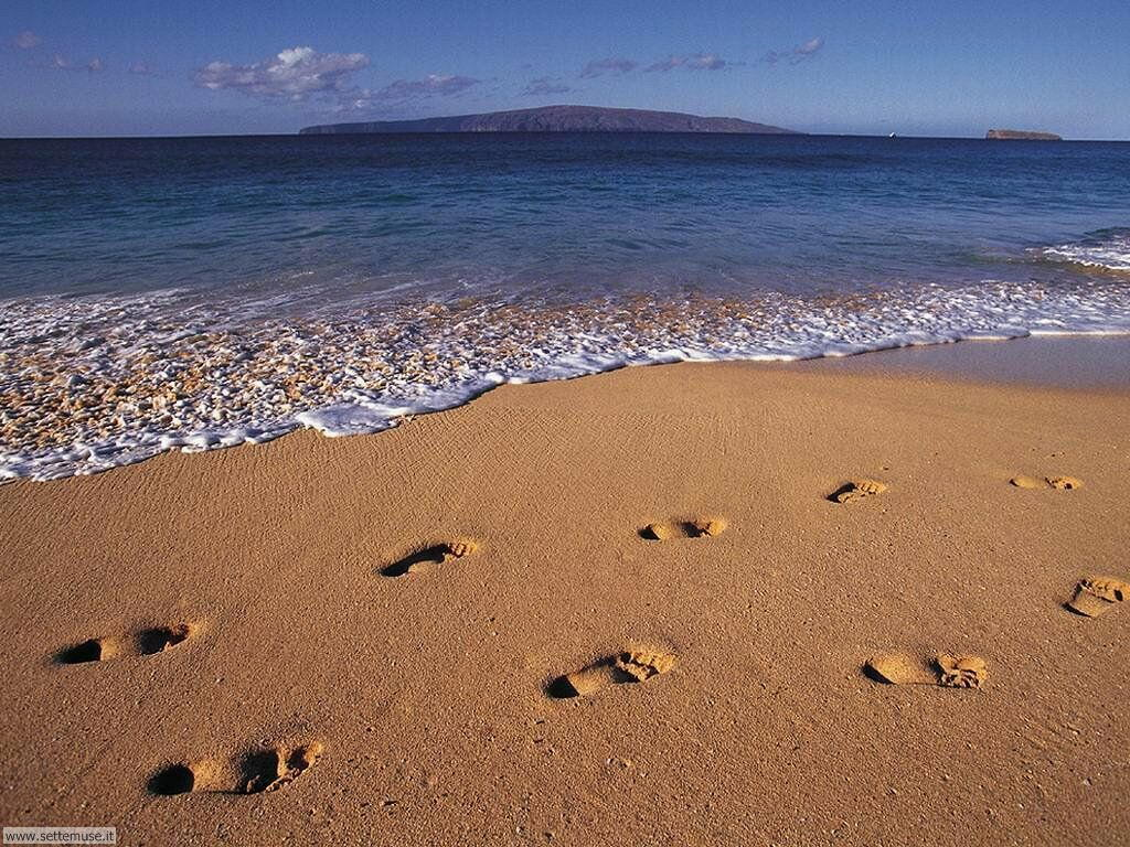 Foto desktop di spiagge da sogno 057