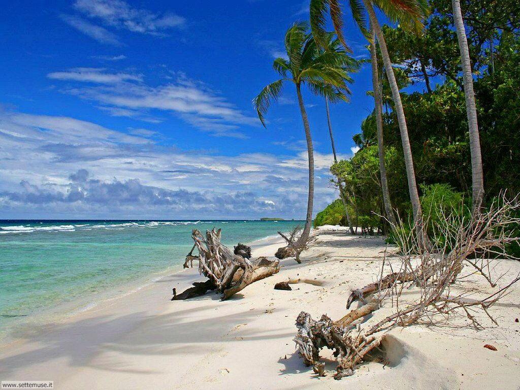 Foto desktop di spiagge da sogno 060