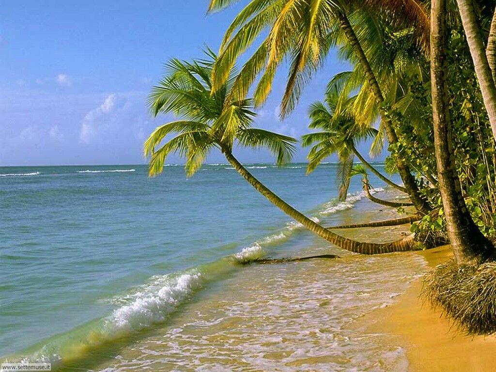 Foto desktop di spiagge da sogno 064