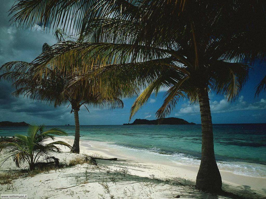 Foto desktop di spiagge da sogno 068
