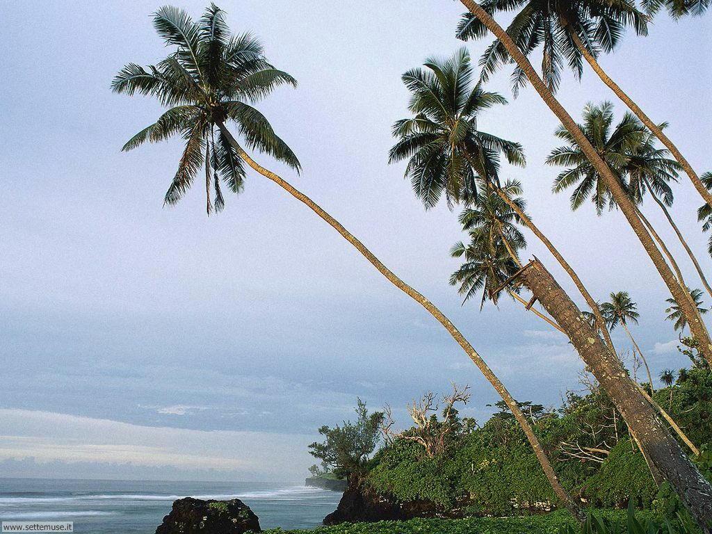Foto desktop di spiagge da sogno 069