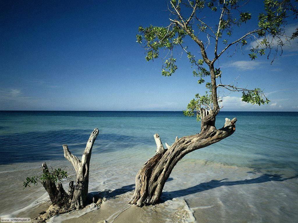 Foto desktop di spiagge da sogno 070