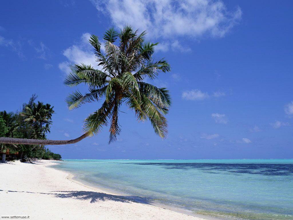 Foto desktop di spiagge da sogno 073
