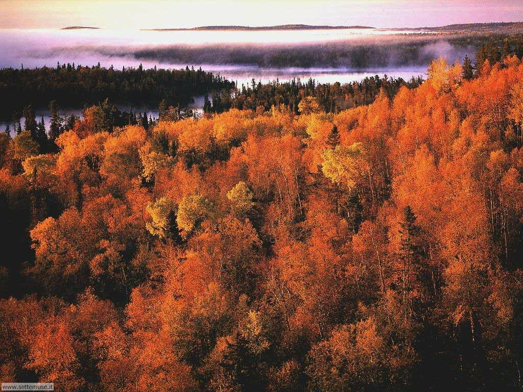 Foto desktop dell'autunno 004