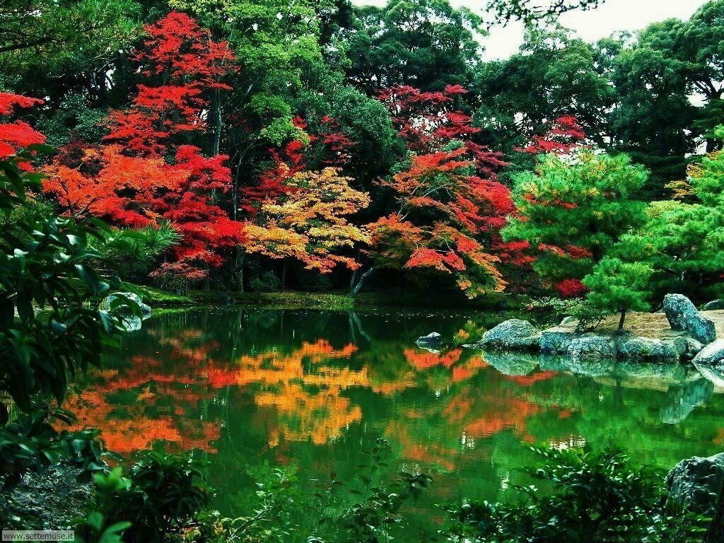 Foto desktop dell'autunno 013