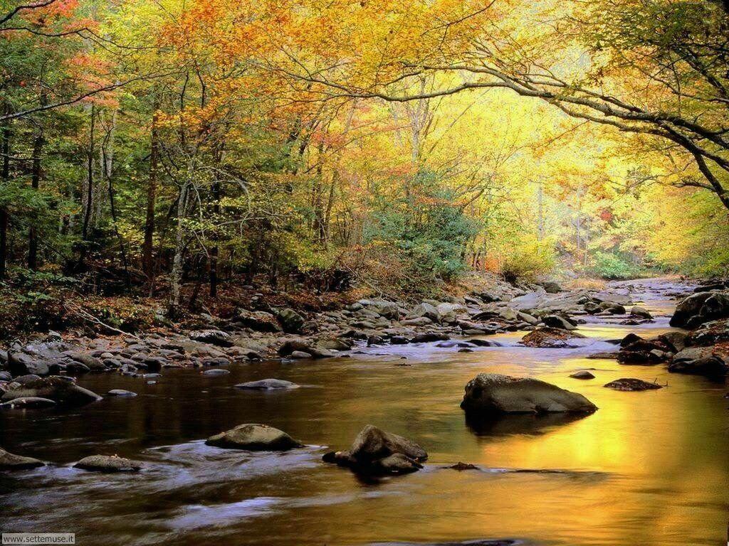 foto dell autunno per sfondi