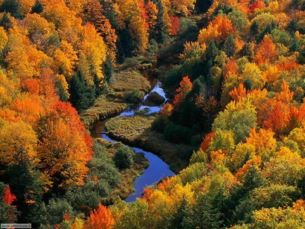 Foto desktop dell'autunno 037