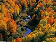 Sfondi desktop di stagioni  autunno