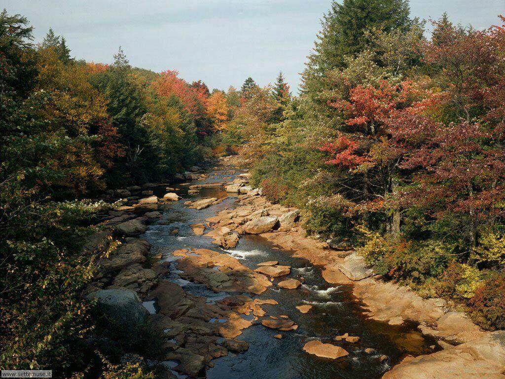 Foto desktop dell'autunno 044