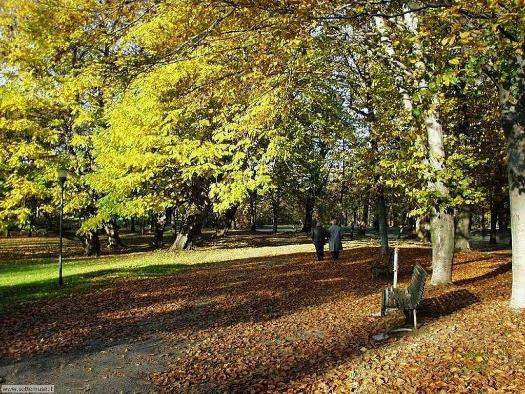 Foto desktop dell'autunno 061