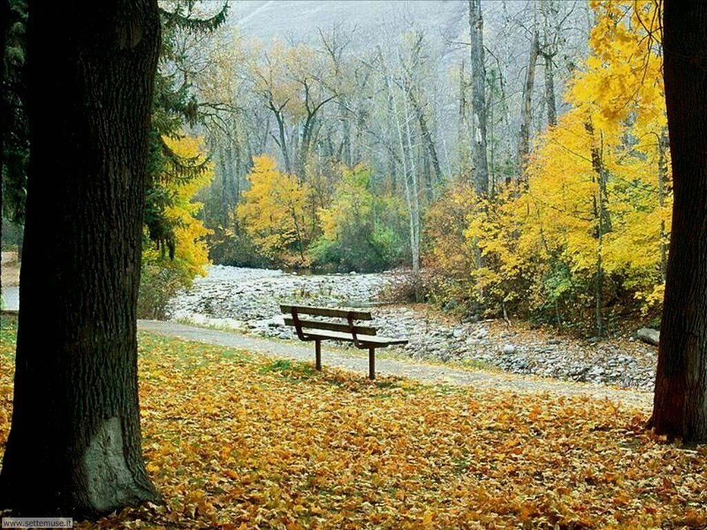 Foto desktop dell'autunno 062