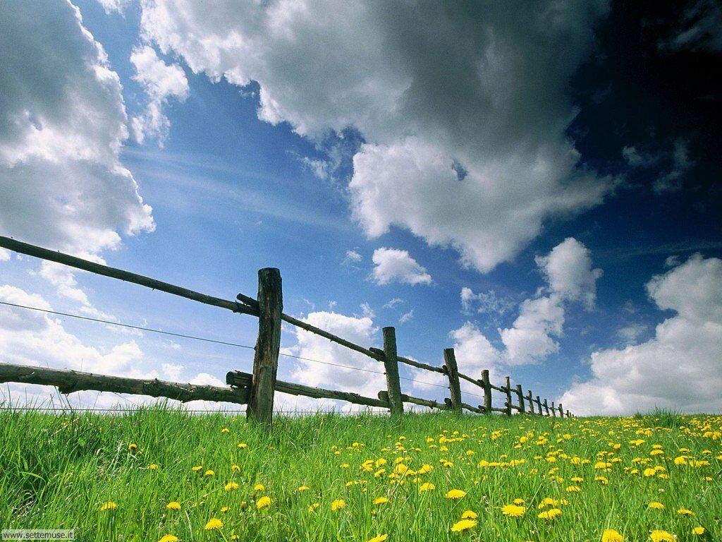 Foto desktop della stagione estate 029