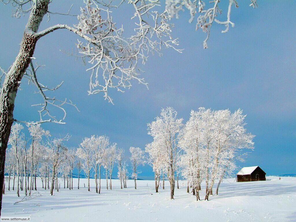 Sfondi invernali bellissimi