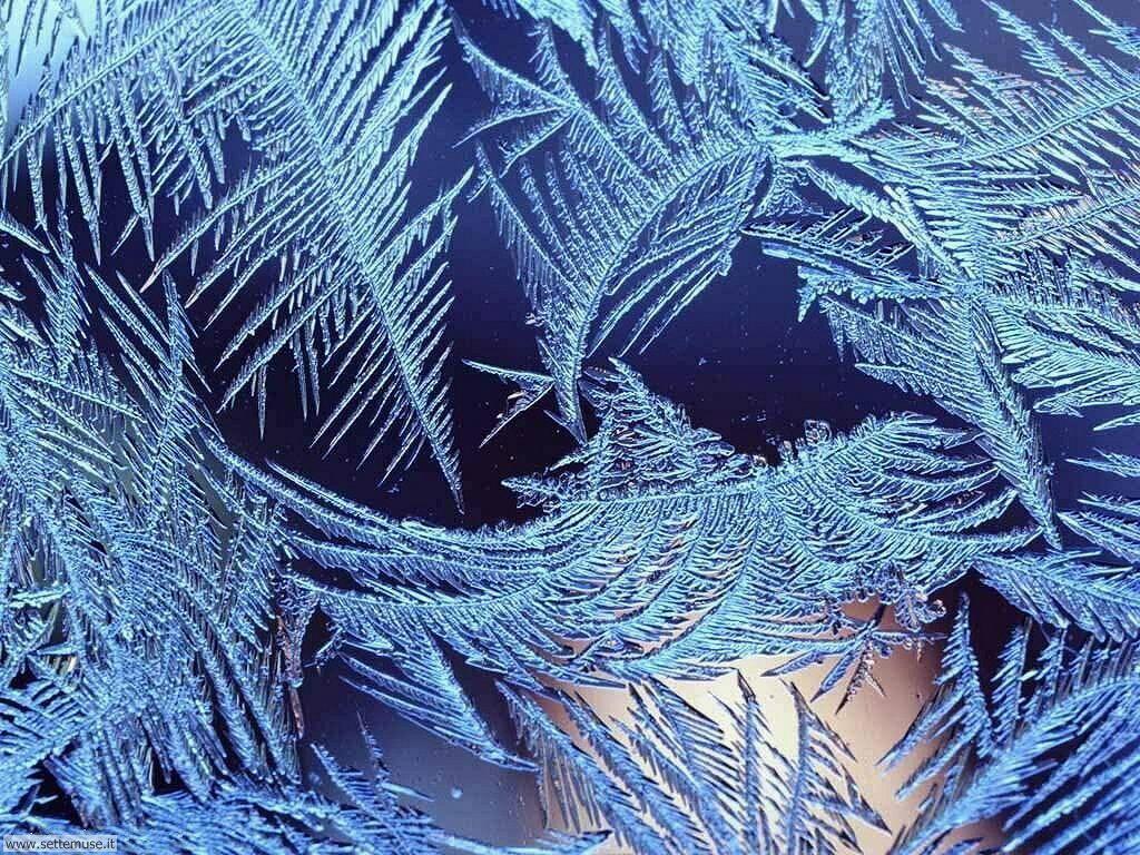 Sfondi cellulare inverno