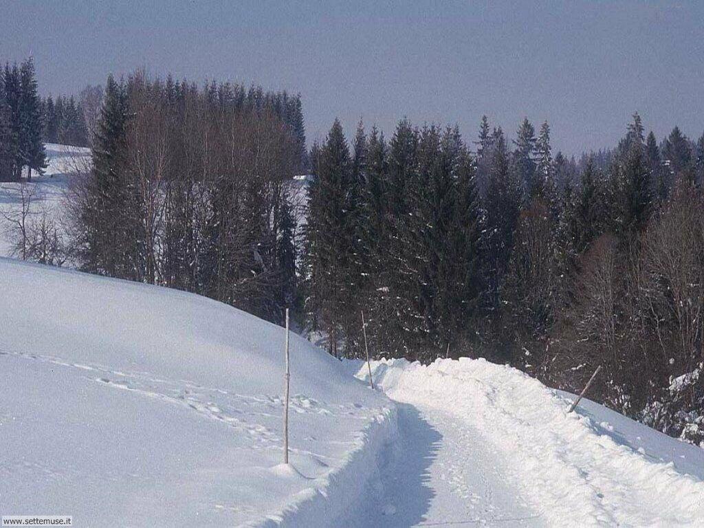 Foto desktop della stagione inverno 038