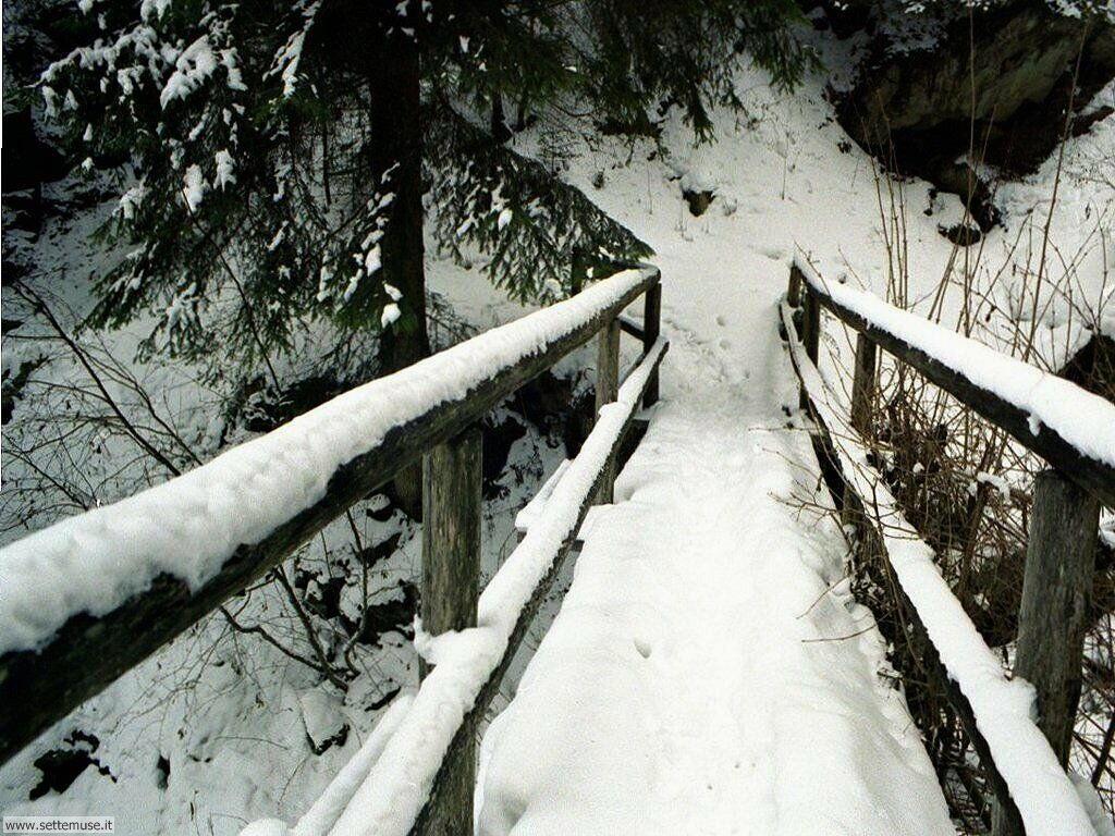 Foto desktop della stagione inverno 045