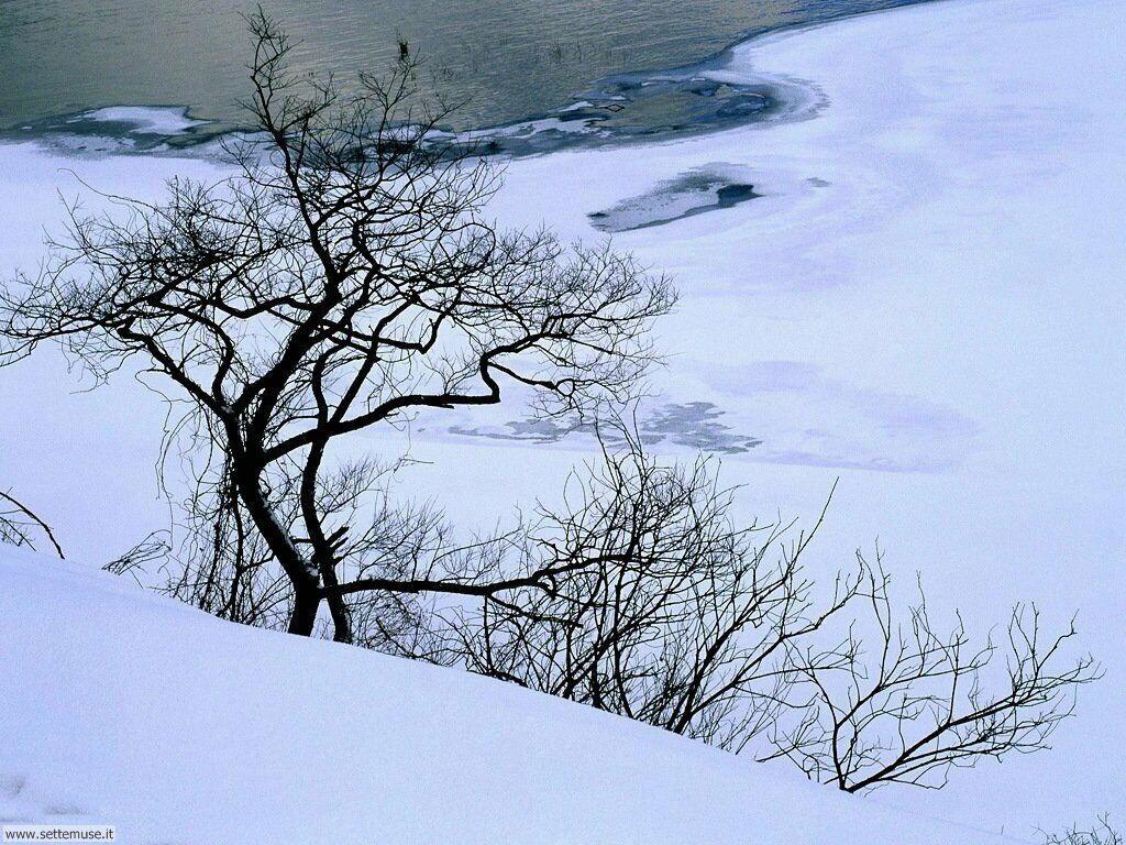 Foto desktop della stagione inverno 050