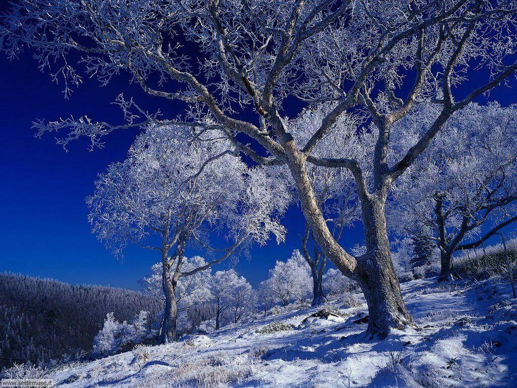 foto inverno per sfondi desktop