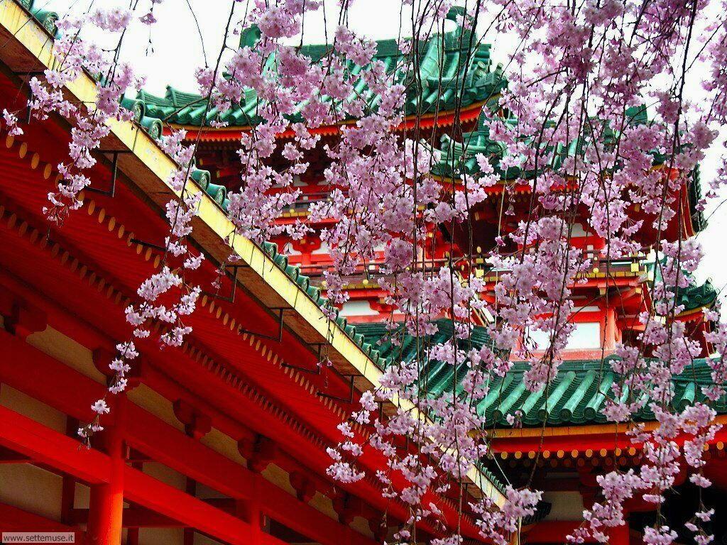 Foto desktop della stagione primavera 073