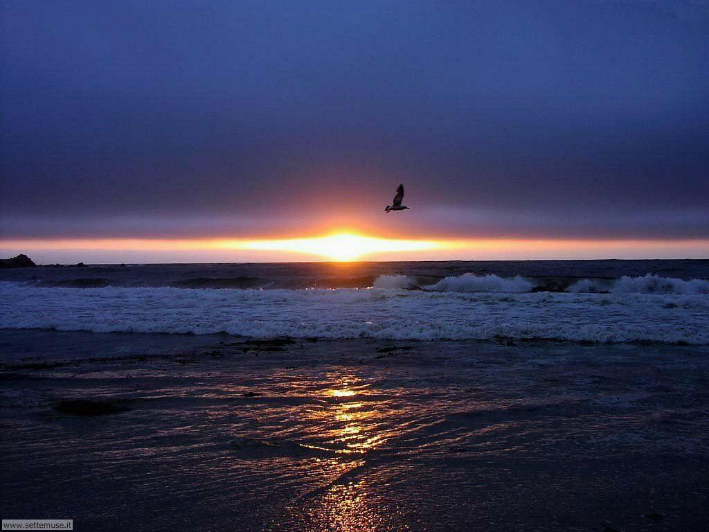 Foto tramonti albe per sfondi desktop for Foto per desktop mare