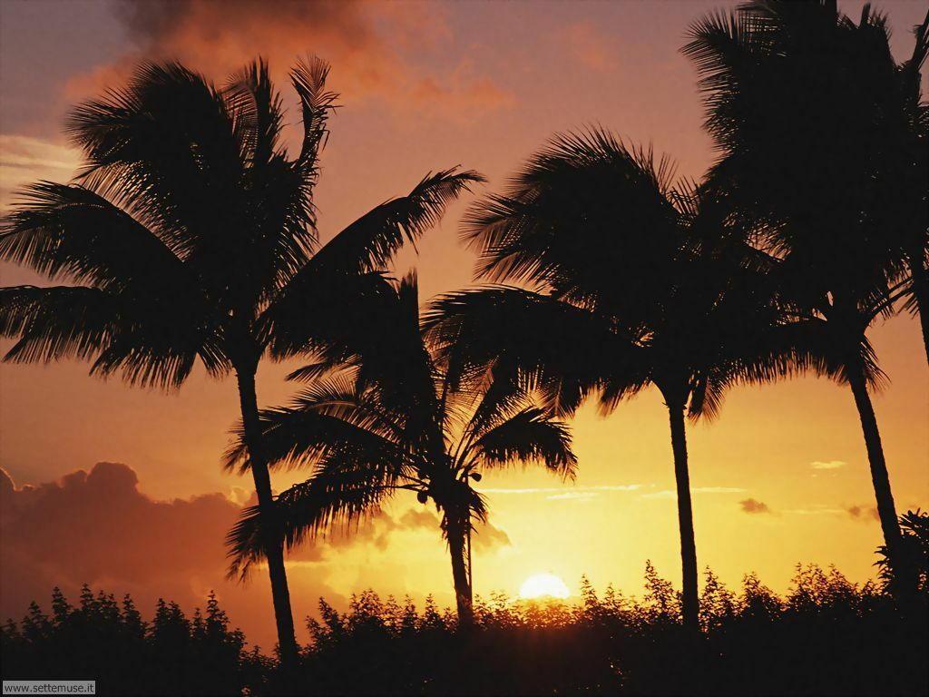 tramonti 17