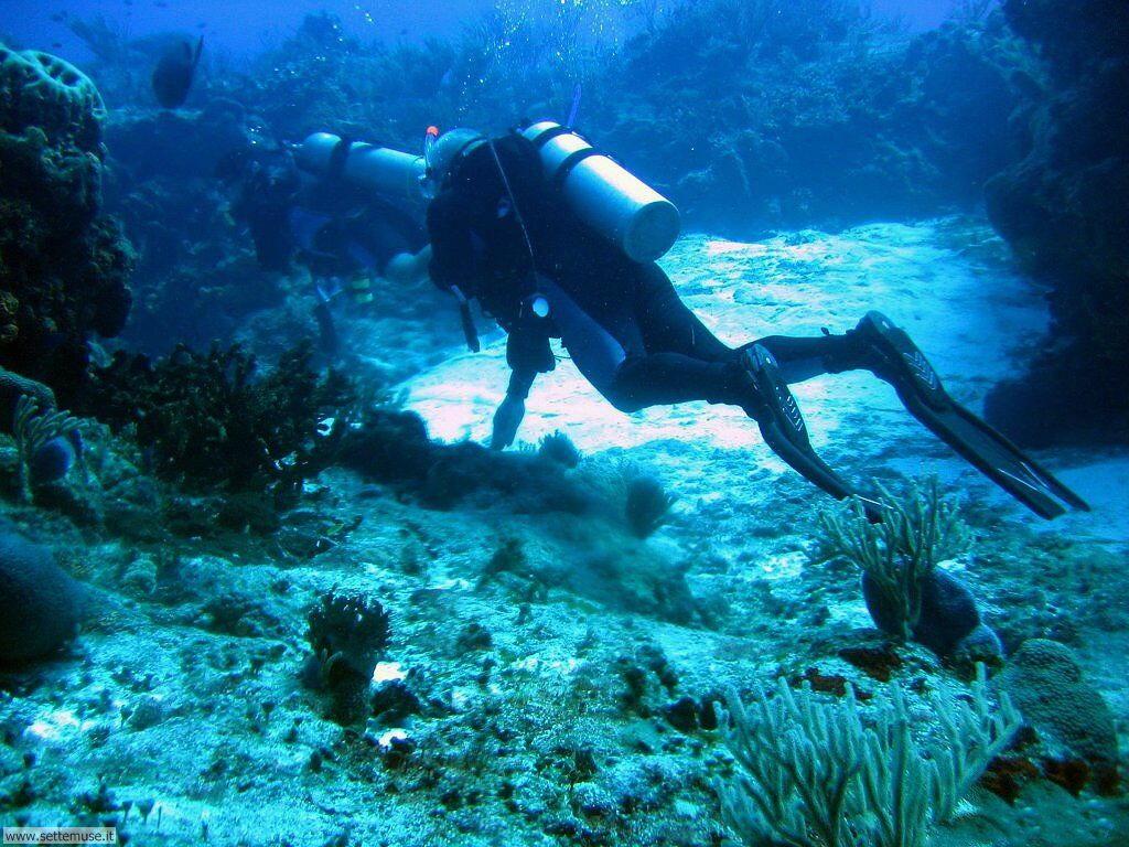 Foto foto sub per sfondi pc - Dive per sempre ...