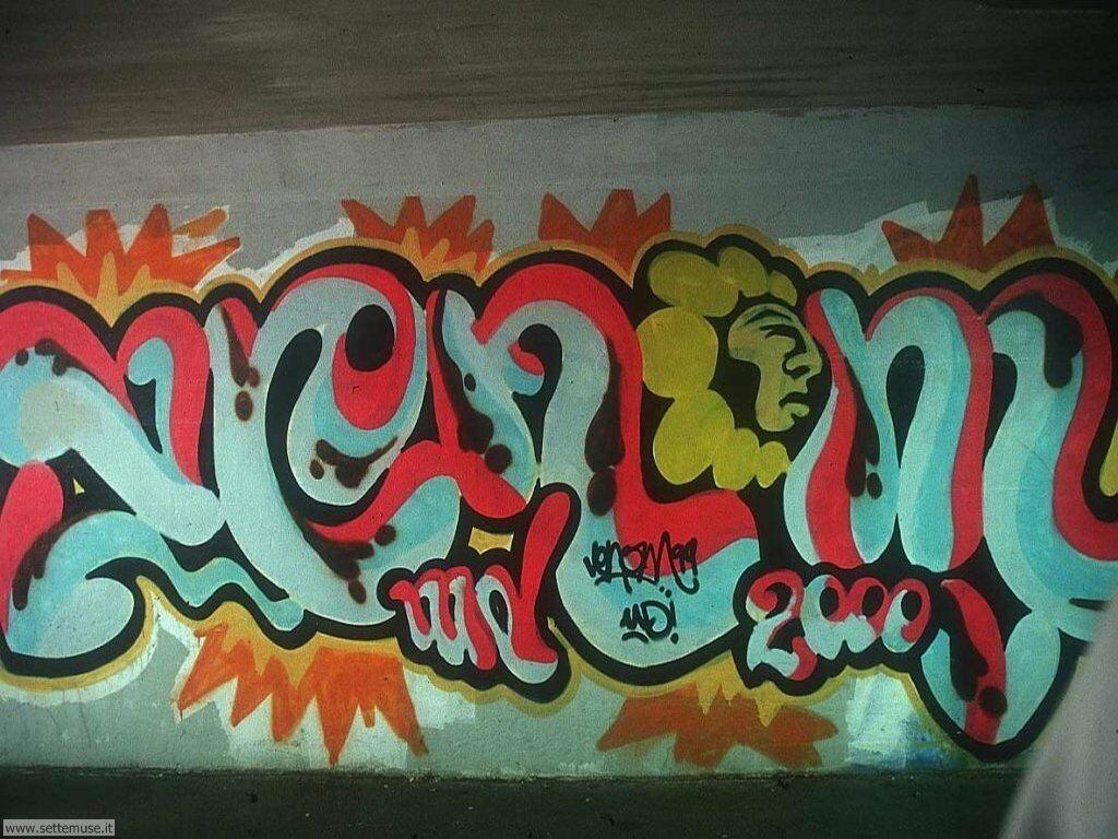 graffiti e murales 19