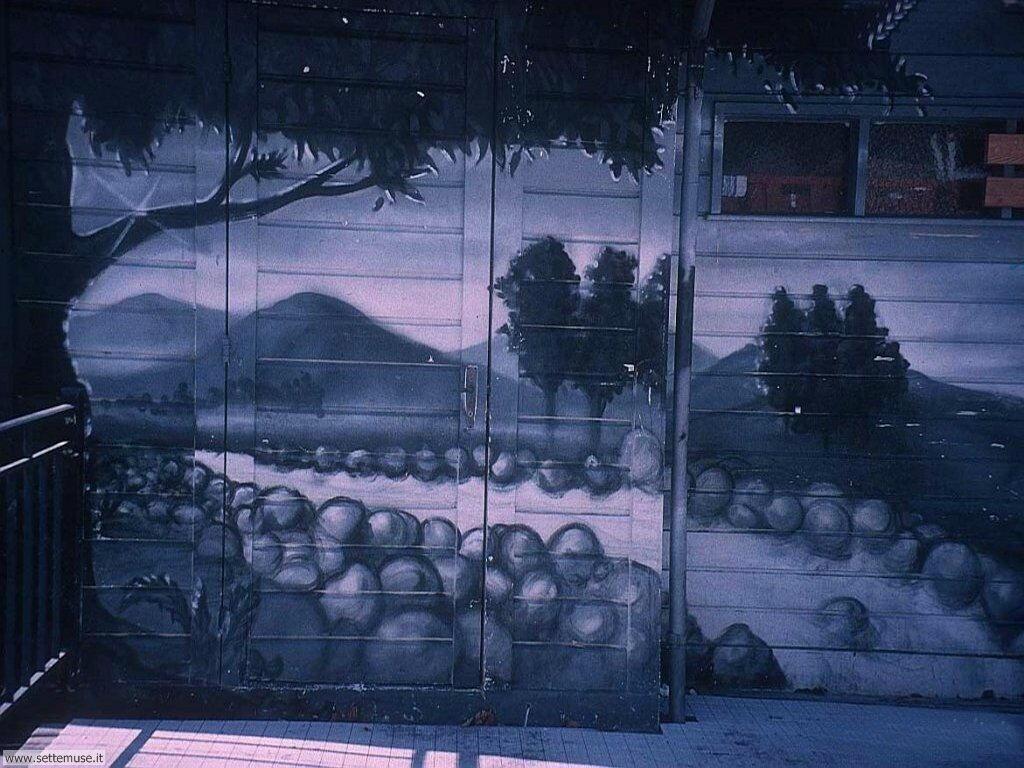 graffiti e murales 022