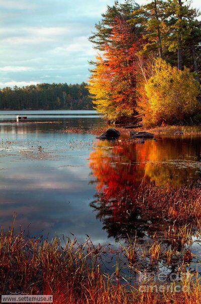 arte e dipinti su foto autunno 02