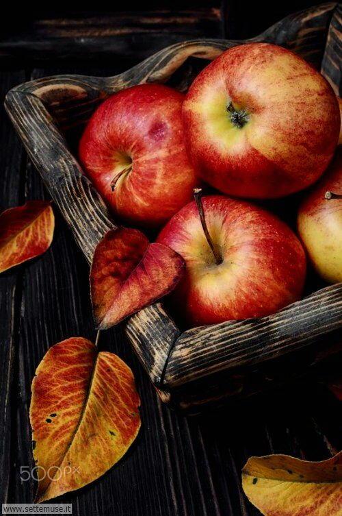 arte e dipinti su frutta-verdura-10