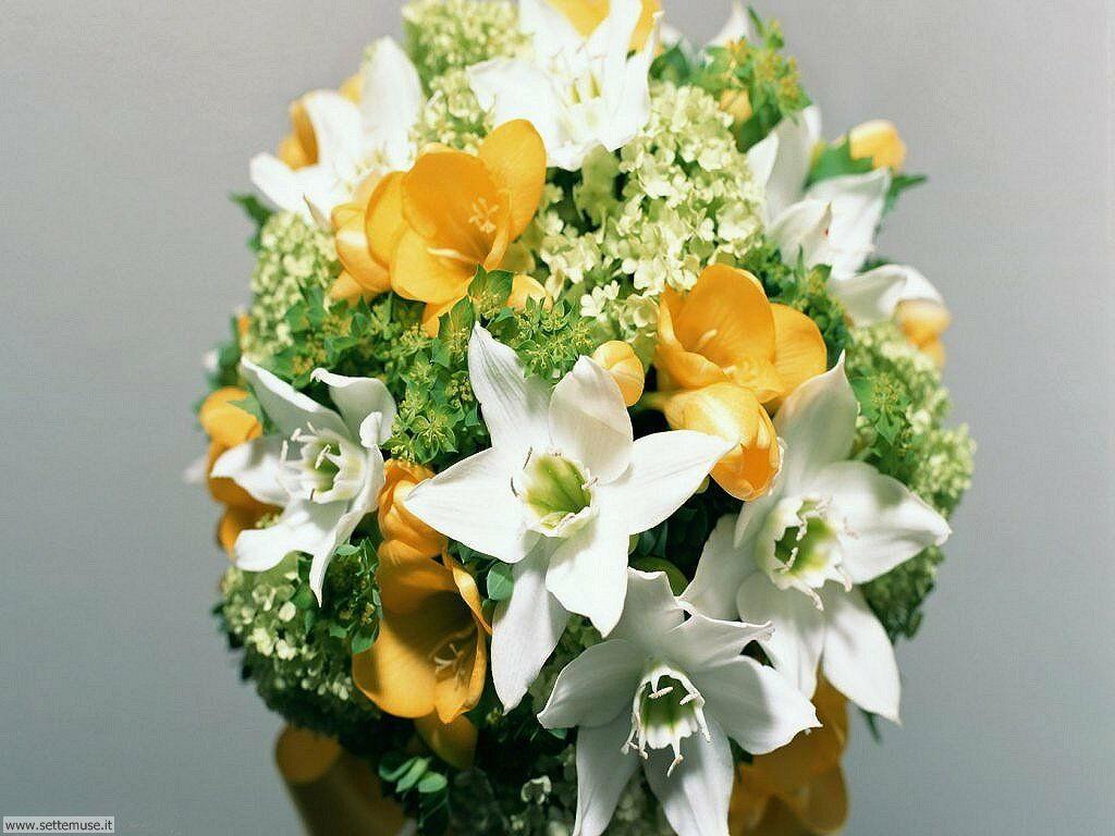 Il Piu Bel Mazzo Di Fiori.Foto Bouquet Di Fiori Per Sfondi Settemuse It