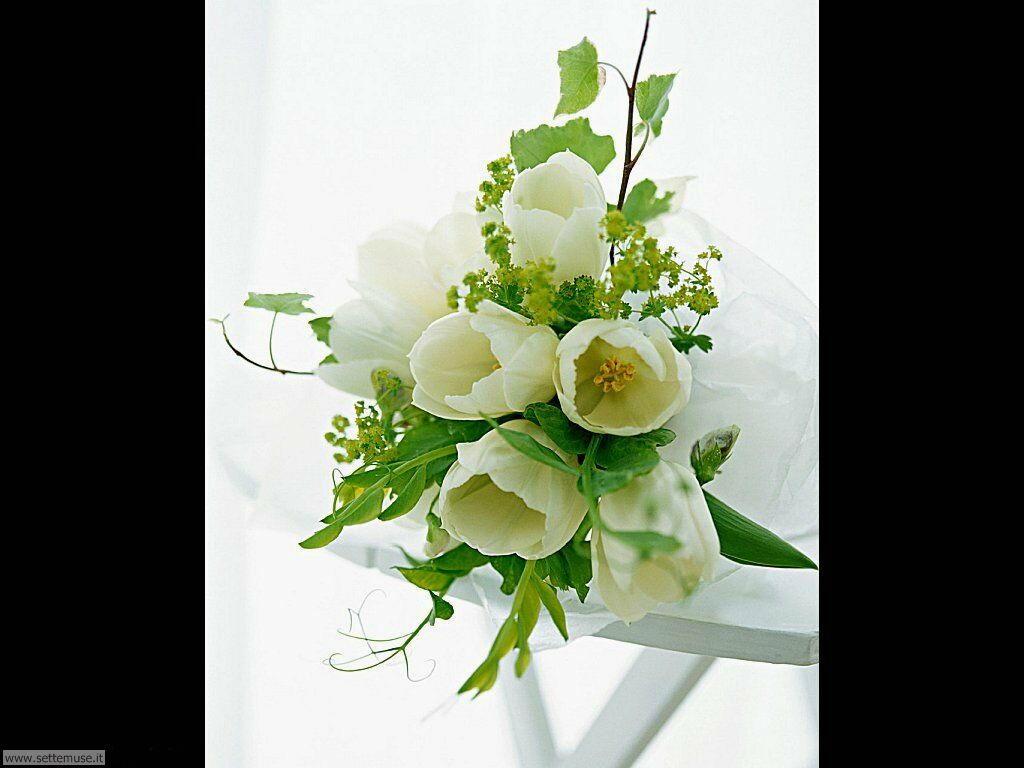 fiori singoli 020