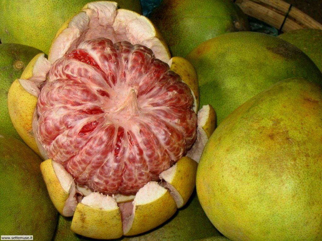 Sfondi desktop frutta e verdura_061