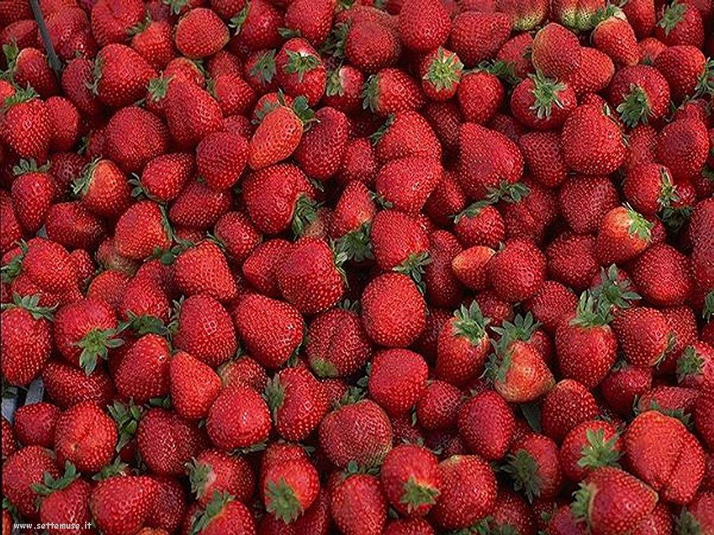 Sfondi desktop frutta e verdura_093